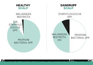 Onevenwichtig microbioom
